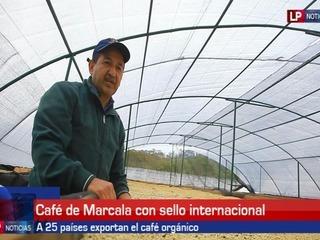 Café de Marcala sello internacional que apareció en el Super Bowl