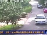 Un tigre mata a una mujer en un zoológico de China