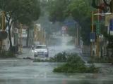 El tifón Megi causa 3 muertos y 167 heridos, además de graves daños en Taiwán