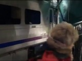 Al menos tres muertos y 200 heridos en un accidente de tren en EEUU