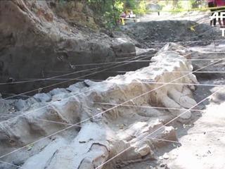 Hallan fósil de ballena de 1,8 millones de años en México
