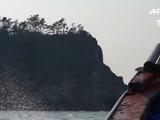 A tres años de naufragio emergen restos de ferry surcoreano