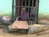 Sacos de arena para evitar que el lodo entre a las casas en Perú