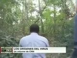 Conozca los bosques donde se originó el virus del Zika