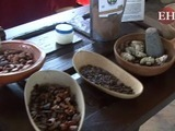 El museo del cacao en Roatán, dulce estación en el Caribe