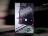 Impactante: Este Iphone encierra un macabro misterio