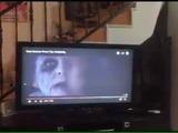 Perro se asusta al ver la película El Conjuro 2