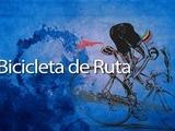 Conozca las caracteristicas básicas de una bicicleta de ruta