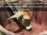 Agricultores y ganaderos enfrentan sequía en Marcovia, Choluteca