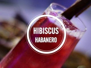 Hibiscus Habanero, Blu bar