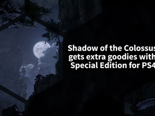 Shadow of the Colossus PS4 remake will have a special edition filled with physical and digital goodies