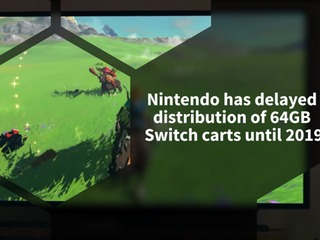 Nintendo delays 64GB Switch carts until 2019, due to technical issues
