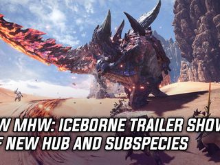 MHW: Iceborne trailer shows off new hub and subspecies, and